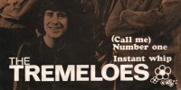 Tremeloes – (Call Me) Number One