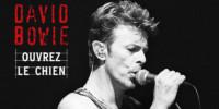 Nové album Davida Bowieho